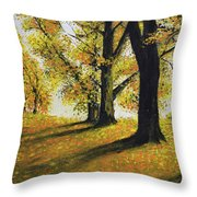 Autumn Sunny Day Throw Pillow