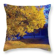 Autumn Sunrise In The Country Throw Pillow