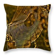 Autumn Sunrise With Spider Web Throw Pillow
