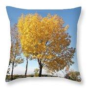 Autumn Sunshine Throw Pillow