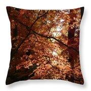 Autumn Sunshine Poster Throw Pillow by Carol Groenen