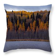 Autumn Tiers Throw Pillow