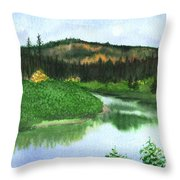 Autumn Transition Throw Pillow