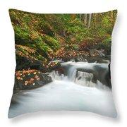Autumn Treasure Throw Pillow