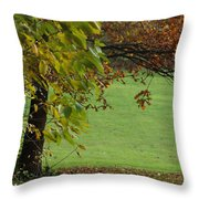 Autumn Tree 1 Throw Pillow