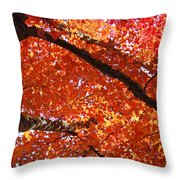 Autumn Tree Art Prints Orange Red Leaves Baslee Troutman Throw Pillow