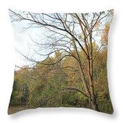 Autumn Tree At Sunset Light Throw Pillow