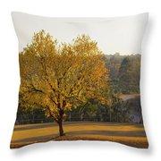 Autumn Tree At Sunset Throw Pillow