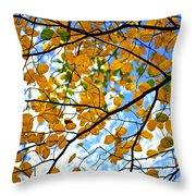 Autumn Tree Branches Throw Pillow by Elena Elisseeva
