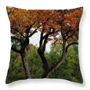 Autumn Tree II Throw Pillow