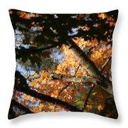 Autumn Trees 2015 Pa 01 Throw Pillow