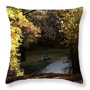 Autumn Trees 3 Throw Pillow