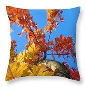 Autumn Trees Artwork Fall Leaves Blue Sky Baslee Troutman Throw Pillow