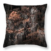 Autumn Trees Growing On Mountain Rocks Throw Pillow