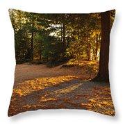 Autumn Trees Near Lake Throw Pillow