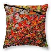 Autumn Trees Rock City Throw Pillow