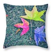 Autumn Trio Throw Pillow