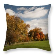 Autumn Under The Sky Throw Pillow