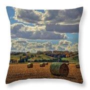 Autumn Valley Bales Throw Pillow