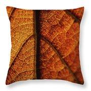 Autumn Veins Throw Pillow
