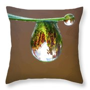 Autumn Vineyard In A Drop Of Due Throw Pillow