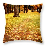 Autumn Walk In Spokane Throw Pillow