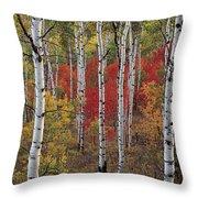 Autumn Warm Throw Pillow