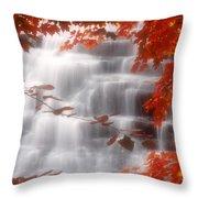 Autumn Waterfall I Throw Pillow
