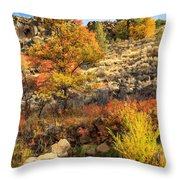 Autumn Waters Of The Susan River Throw Pillow