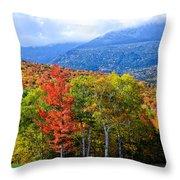 Autumn White Mountains Nh Throw Pillow