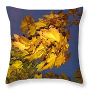 Autumn Winds Throw Pillow