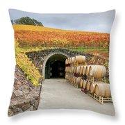Autumn Wine Cave Throw Pillow