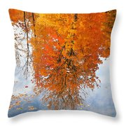 Autumn With Colorful Foliage And Water Reflection 19 Throw Pillow