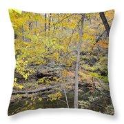 Autumn Woods 2 Throw Pillow