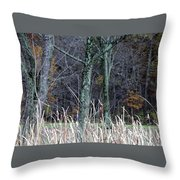 Autumn Woods Throw Pillow