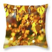 Autumnal Curtain Throw Pillow