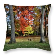 Autumnal Framework Throw Pillow