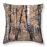 Autumnal Lightness Throw Pillow