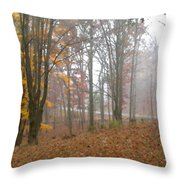 Autumnal Mist Throw Pillow