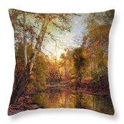 Autumnal Tones 2 Throw Pillow