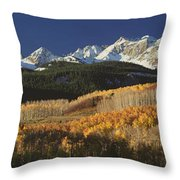 Autumnal View Of Aspen Trees And The Throw Pillow