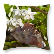 Autumnleaf Butterfly Throw Pillow