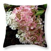 Autumn's Arrival Throw Pillow