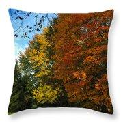 Autumn's Artwork Throw Pillow