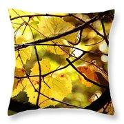 Autumn's Revelry Throw Pillow