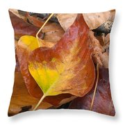 Autumns Color Palette Throw Pillow