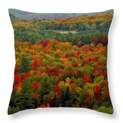 Autumns Colors Throw Pillow