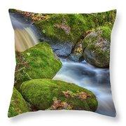 Autumn's Creek 2 Throw Pillow