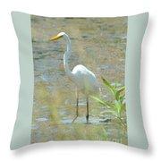 Autumn's Egret Throw Pillow