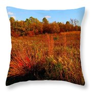 Autumns Field Throw Pillow